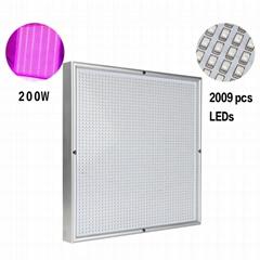 High-power Vegetable fill light 200W Plant growth lamp Plant-growthlight