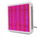 Best selling plant light 800W Popular