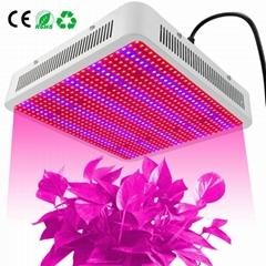 High-power growth light plant light 800W power led