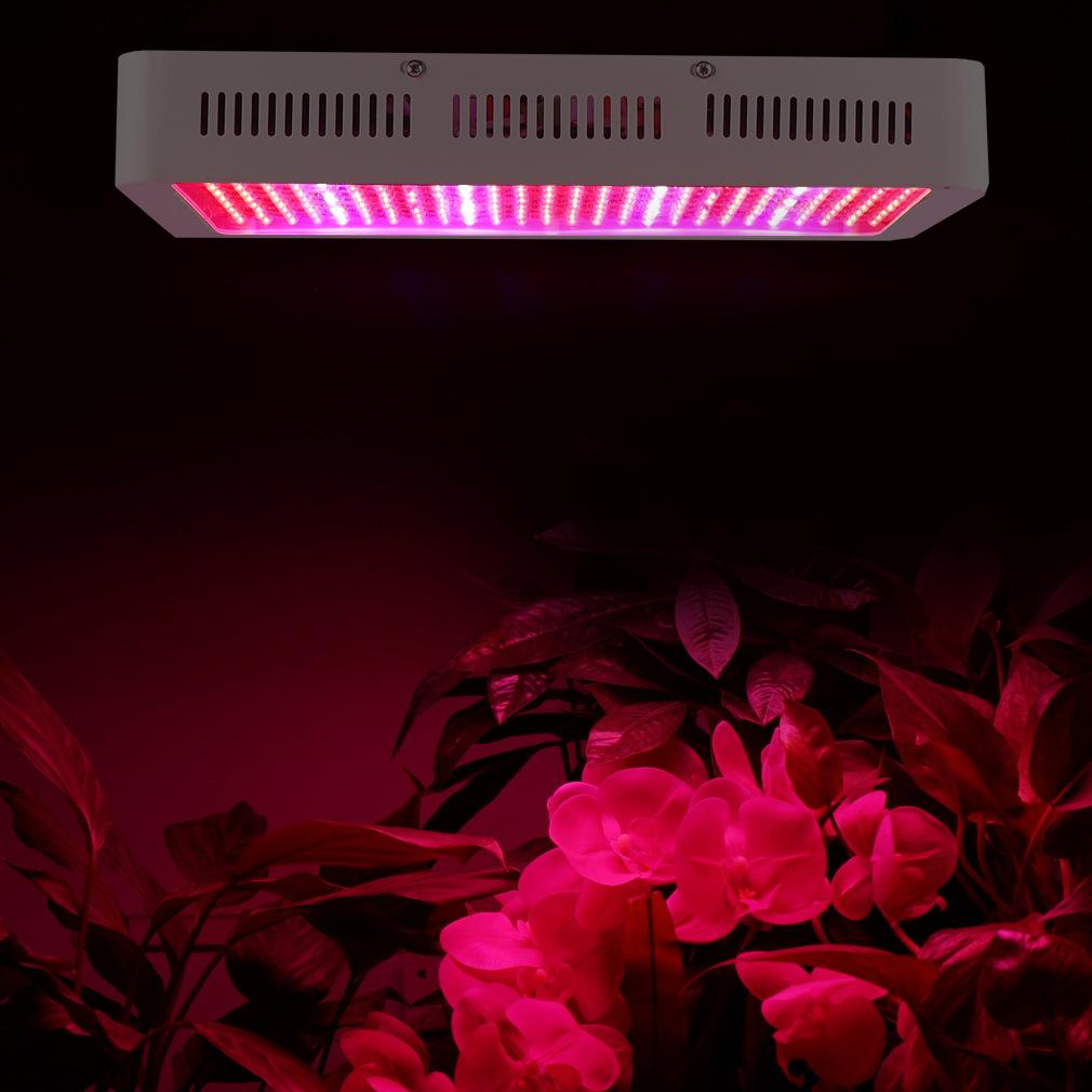 High-power growth light vegetation lighting 4