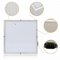 30Wled grow light for greenhouse