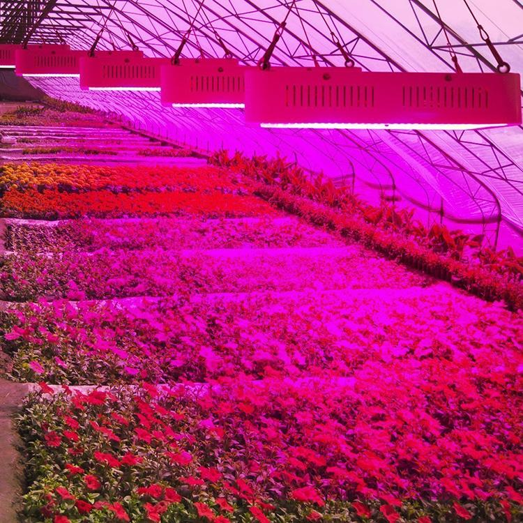 1800W LED plant grow light,high-power growth lamp,cob green fill light 8