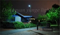 40W Solar Panel,12W LED Integrated Solar light (Working Time 14.5 hours) 17