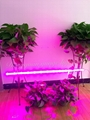 28W LED plant grow lamp,T8 tube grow light double row, Red blue growth lamp. 5