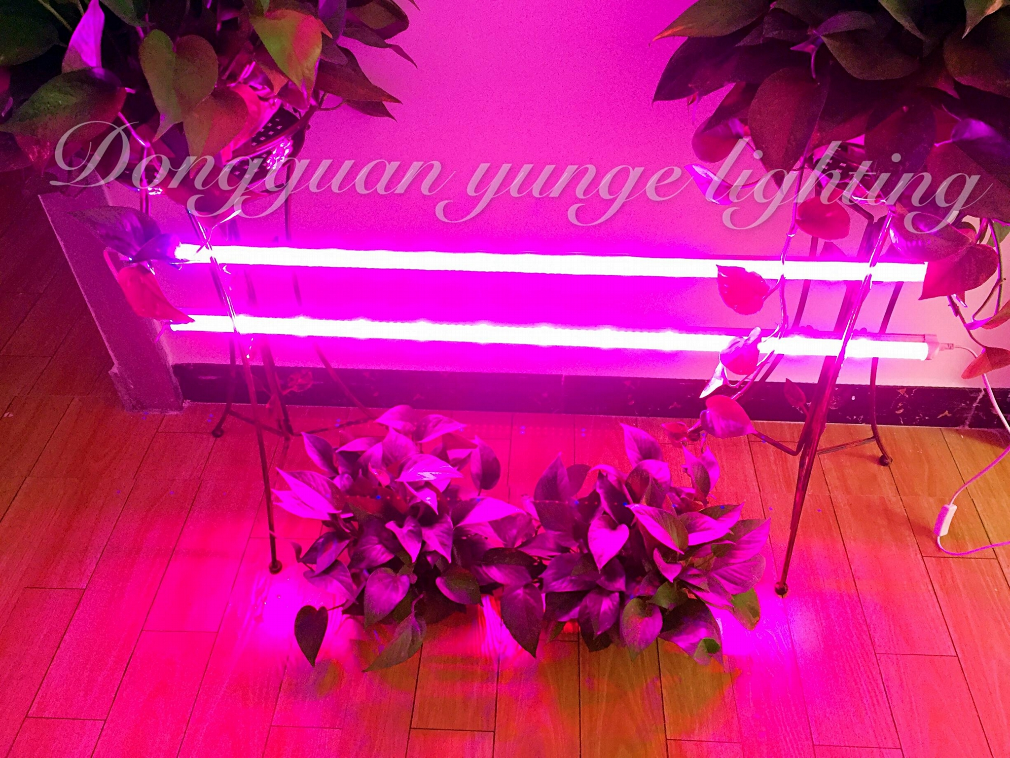 28W LED plant grow lamp,T8 tube grow light double row, Red blue growth lamp. 3