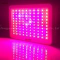 300W LED plant grow light,high-power panel lamp,100pcs Chips grow light 6