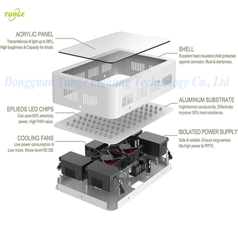 300W LED plant grow light,high-power panel lamp,100pcs Chips grow light 8