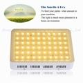 300W LED grow lamp,high-power panel lamp,60pcs Chips full spectrum growth. 10