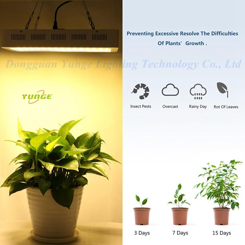 600W LED grow light,high-power panellamp,Full Spectrum120pcs Chips plant light. 10