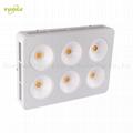 1200W COB LED grow light,