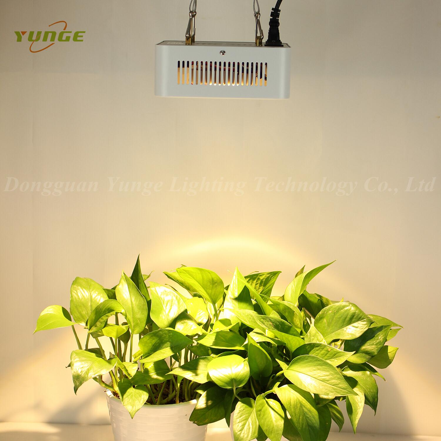 200W COB LED plant grow light,High quality CREE chip,high Lumious flux lamp 7