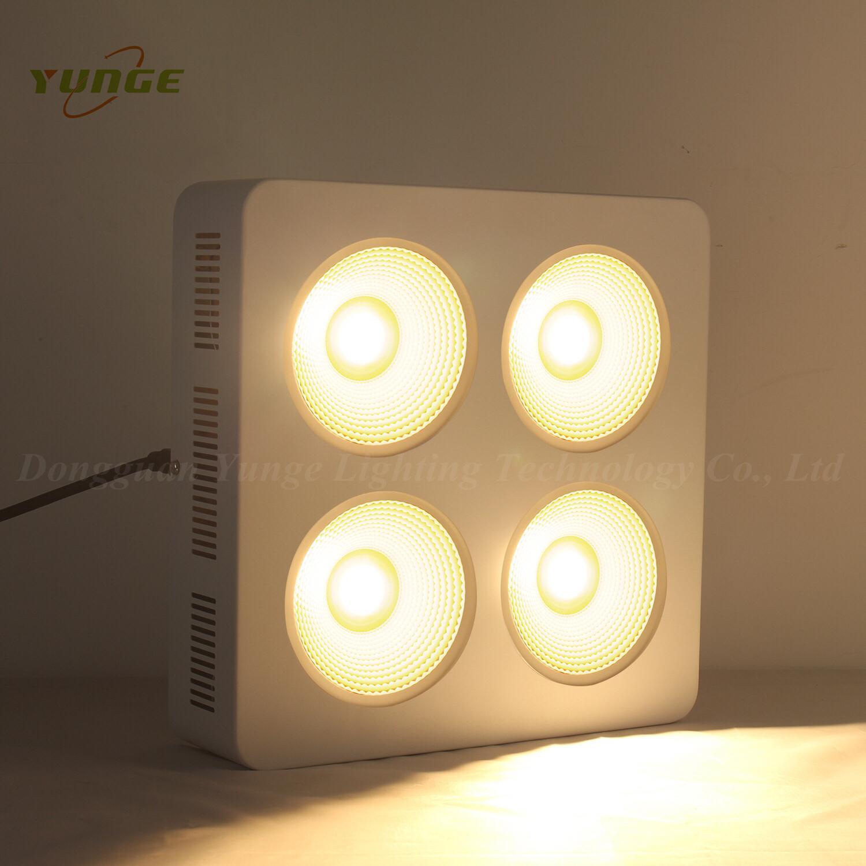 800W COB LED plant grow light,High quality CREE chip,high Lumious flux lamp. 6