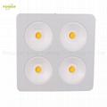 800W COB LED plant grow light,High quality CREE chip,high Lumious flux lamp. 2
