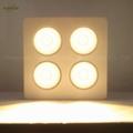 800W COB LED plant grow light,High quality CREE chip,high Lumious flux lamp. 5