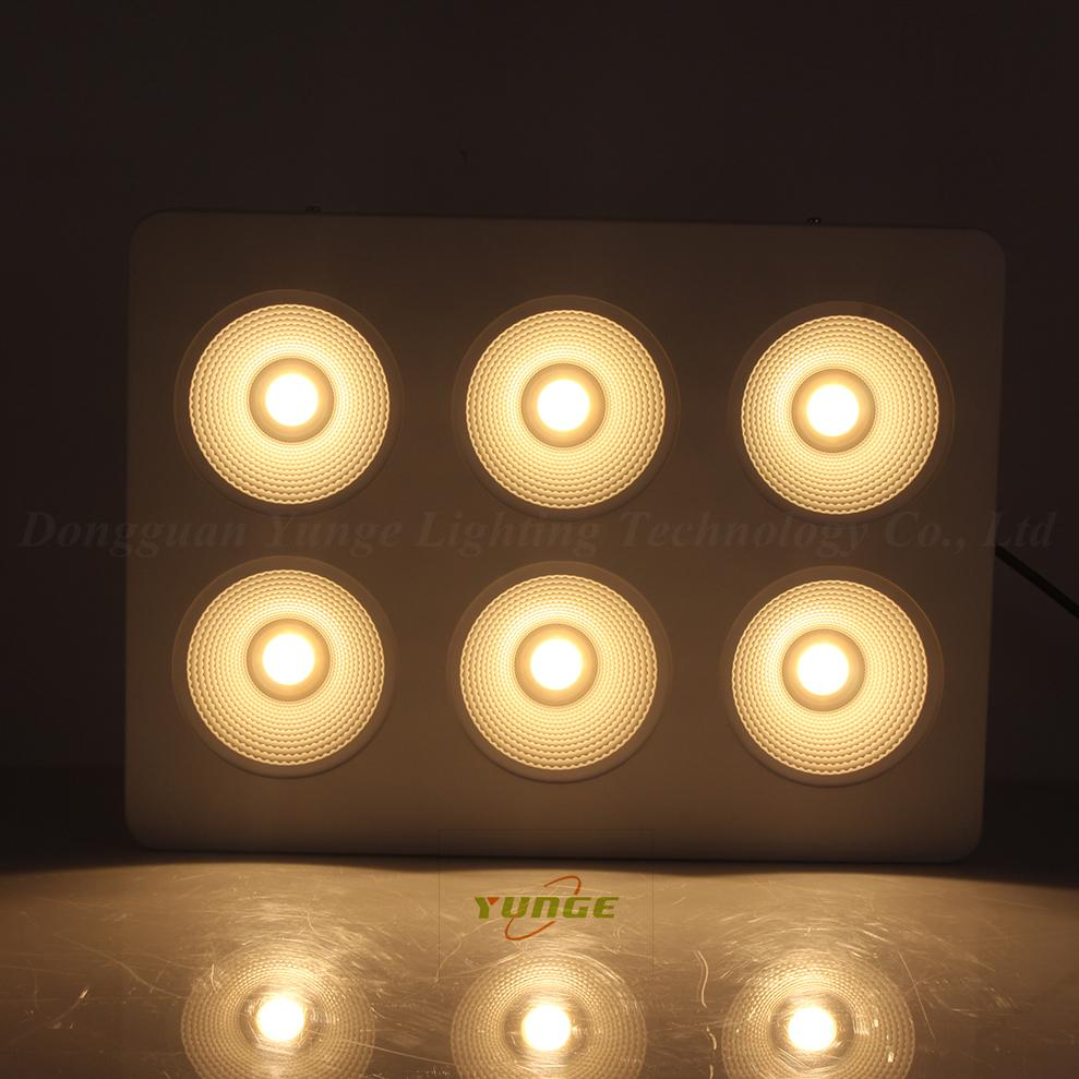 1200W COB LED plant grow light,High quality CREE chip,high Lumious flux lamp. 7