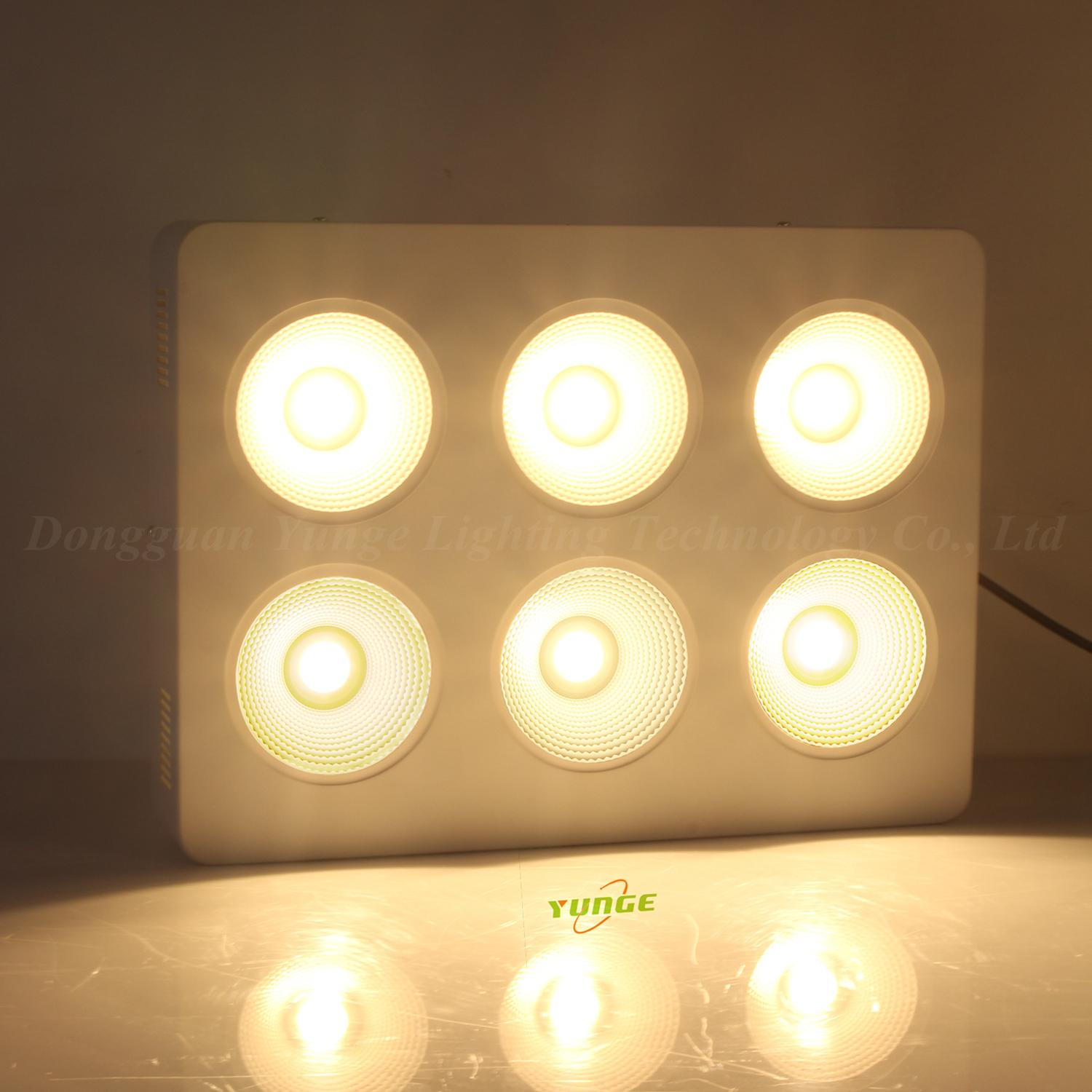 1200W COB LED plant grow light,High quality CREE chip,high Lumious flux lamp. 6