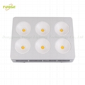 1200W COB LED plant grow light,High quality CREE chip,high Lumious flux lamp. 3