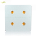 800W COB LED grow light,High quality CREE chip,high Lumious flux lamp.