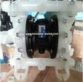 RW气动隔膜泵