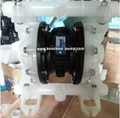 RW Series Air Operated Double diaphragm pump
