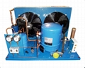 Air-cooled Condensing Unit  For Cold