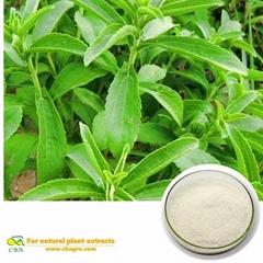 Stevia Extract sugar Hig