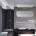 德洛施克黑金圭纳米芯片远红外线隐藏挂壁式热水器 1