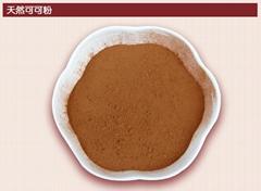 专业供应食品级可可粉生产厂家直销