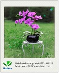 46cm Artificial Orchid in Ceramic Pot
