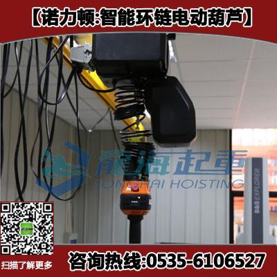 250kg智能环链葫芦 1