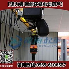 250kg智能環鏈葫蘆