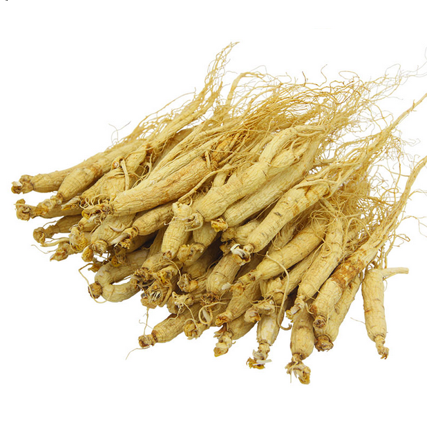 1005 Ren shen use for crude Chinese Medicine Ginseng for sale 5