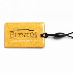 Custom RFID pet Epoxy tag EM4200 chip