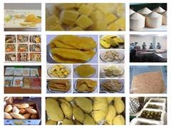 Dried / Freeze Dried Fruits
