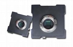 Camera 2/3 CCD Camera Global Shutter Camera S1TC05C-CM for Fluorescent Imaging