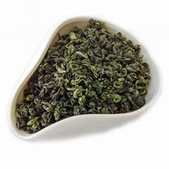 High Quality Gunpower Green Tea