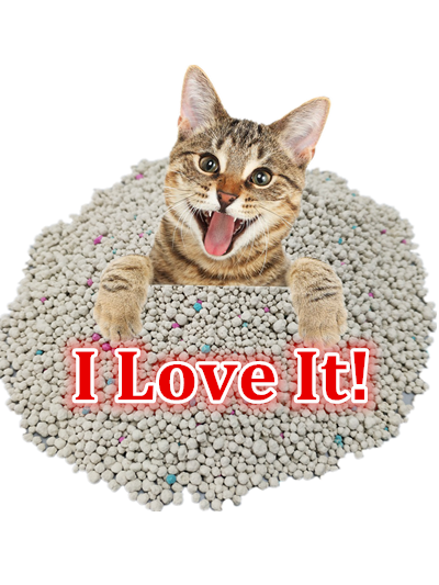 Bentonite cat litter 1
