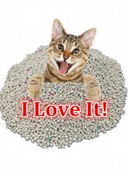 Bentonite cat litter