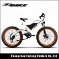 2018 new model mountain electric bike 4