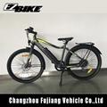 250W rear motor bike mountain Electric Bike with CE/EN 15194 Made in China