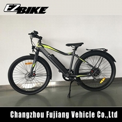 250W rear motor bike mountain Electric Bike with CE/EN 15194 Made in China