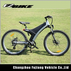 electric bicycle TDA11