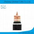 5 Core Copper Conductor XLPE Insulated