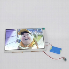 Chinese supplier 4.3 inch format video module