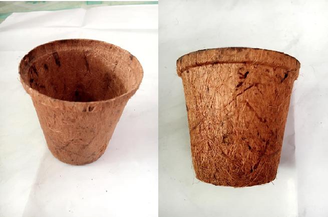 Coir Pots 1