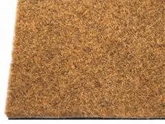 Coir Carper