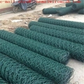 Hexagonal Wire Mesh or chicken mesh