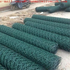 Hexagonal Wire Mesh or chicken mesh  galvanized chicken me