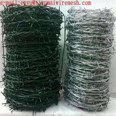 electro barb wire securi