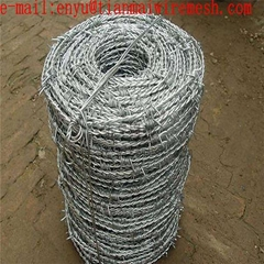 security barbed wire fencing  galvanized barbed wire for sale